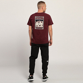 Мужская футболка The North Face TNF (Deep Garnet Red)
